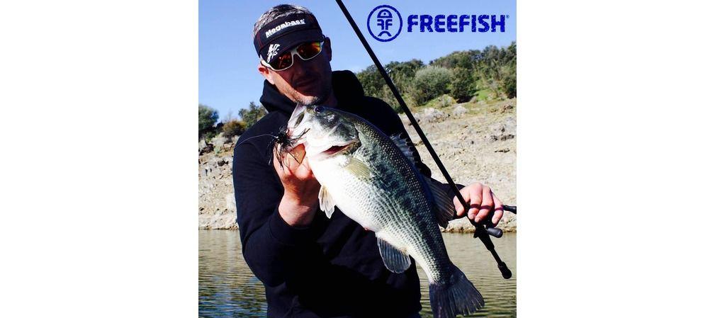 Stéphane Poinçot - FreeFish