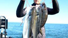 Cédric Guerneve : capture d'écran du solix avec les poissons qui vont avec