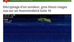 Décryptage d'un sondeur, gros thons rouges vus sur un Hummindbird Solix 10
