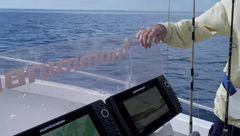 Manipulation des poissons attrapés en pêche sportive : leurres de surface et jig