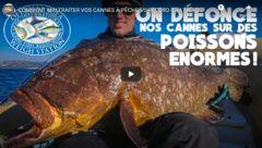 Comment maltraiter vos cannes à pêche