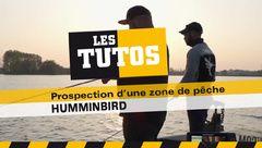 Les Tutos : Interprétation sondeur, prospection et Pêche