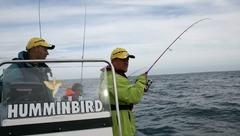 Navicom sur www.fishing-tv.fr