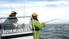 Grand Pavois Fishing 2011 : Navicom partenaire officiel pour l'électronique marine